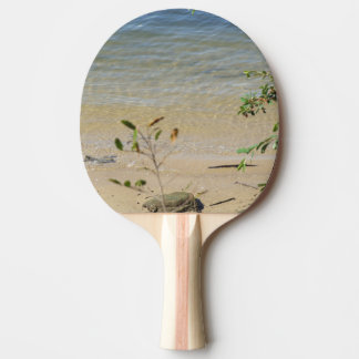 Parramatta River Beach Ping Pong Paddle