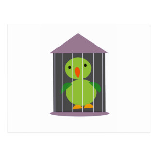 parrot in cage postcard