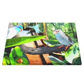 Parrotlet Amazon Amazon Jungle Wrapped Canvas art