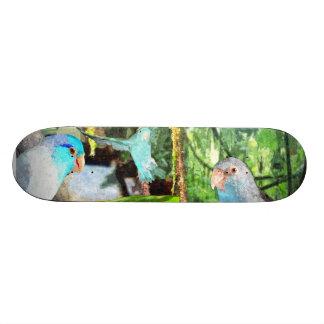 Parrotlet Amazon Jungle Skate board deck art