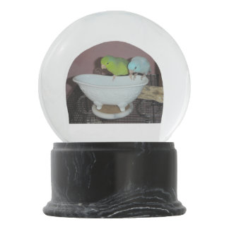 Parrotlet Bath Snow Globe
