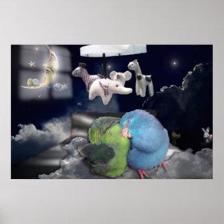 Parrotlet birds pets kids sleeping dreaming poster