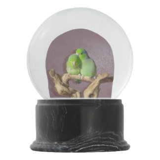 Parrotlet Pair Snow Globe