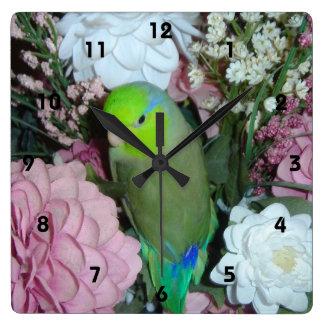Parrotlet Wall Clock