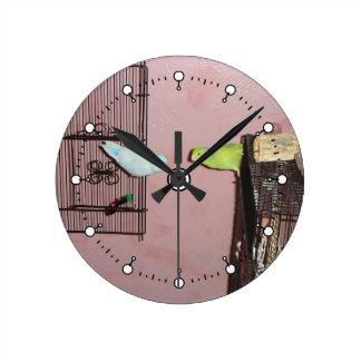 Parrotlets Wall Clock
