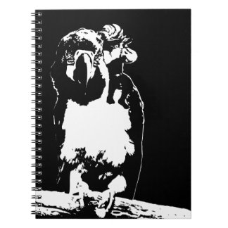Parrot's Pirate Notebook