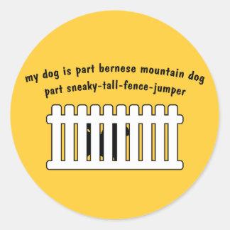 Part Bernese Mountain Dog Part Fence-Jumper Classic Round Sticker