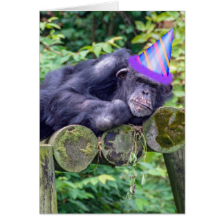 party chimpanzee for humourous birthday card