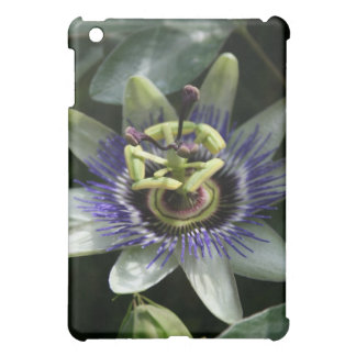 Passiflora Fleur de la Passion iPad case