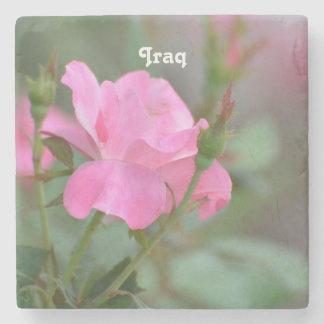 Pastel Pink Rose in Iraq Stone Coaster