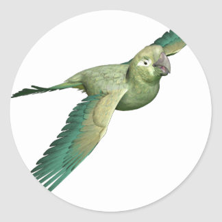 Patagonian Conure Classic Round Sticker