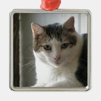 Paul Christmas Ornament