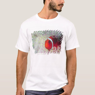 Paupau New Guinea, Great Barrier Reef, T-Shirt