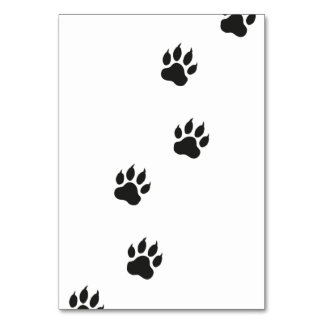 Paw prints of a cat card