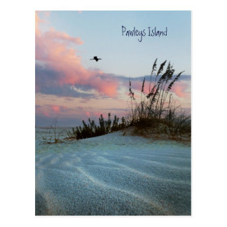 Pawleys Island Dune Sunset Postcard