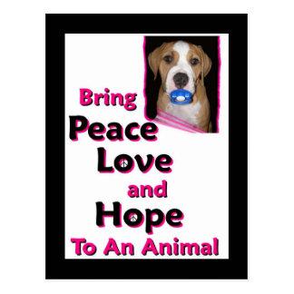 peace hope joy love postcard
