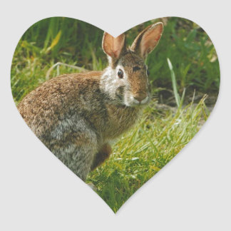 Peace & Love Heart Stickers