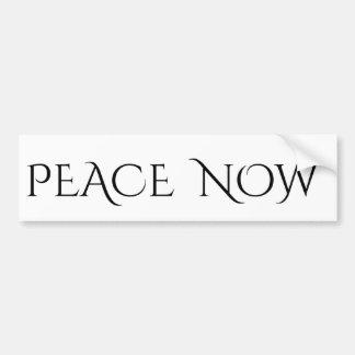 Peace Now Bumper Sticker