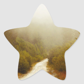 PEACEFUL FOREST PATH STAR STICKER