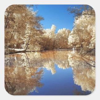 Peaceful Morning.jpg Sticker