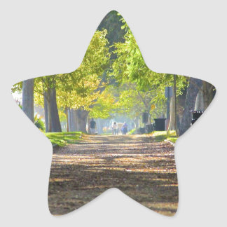 Peaceful Path Star Stickers