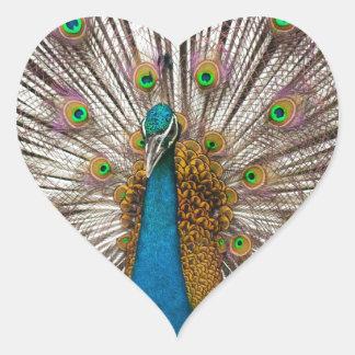 Peaceful Peacock Sticker