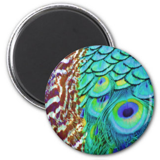 Peaceful Peafowl Flow Magnet