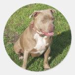 Peaceful Pitbull Round Sticker
