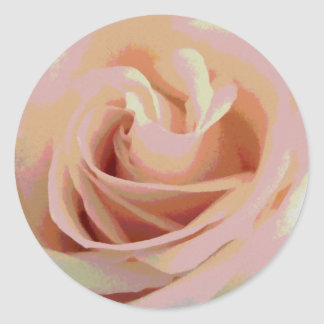 Peach Pink Rose Macro Classic Round Sticker