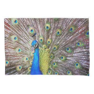 Peacock Bird Animal Feathers Peafowl Pillowcase