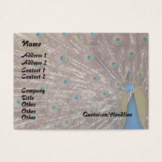 Peacock Bird Feathers Wildlife Animals Business Card