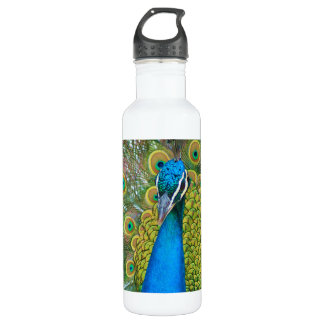 Peacock Blue Head with and Colorful Tail Feathers 710 Ml Water Bottle
