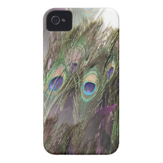 Peacock Feathers Case-Mate iPhone 4 Cases