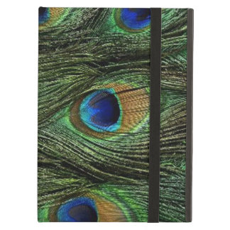 Peacock Feathers iCase iPad Case with Kickstand