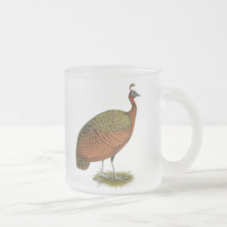 Peafowl:  Congo Peahen Frosted Glass Coffee Mug