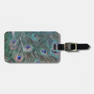 peafowl feather spreed luggage tag