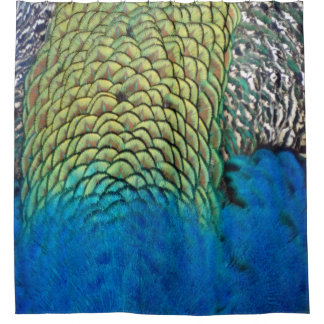 Peafowl Feathers Deep Blue And Gold Colors Shower Curtain