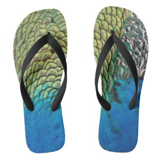 Peafowl Feathers Deep Blue And Gold Colors Thongs