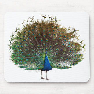 Peafowl Mouse Pad