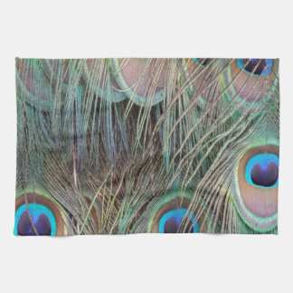 Peafowl Tail Feathers Tea Towel