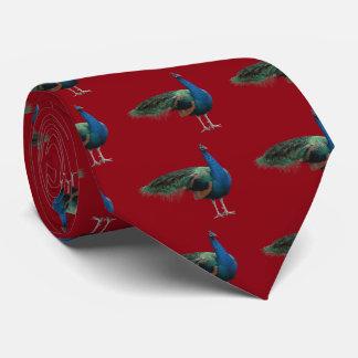 Peafowl Tie