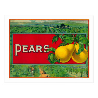 Pear Stock Crate Label Post Cards