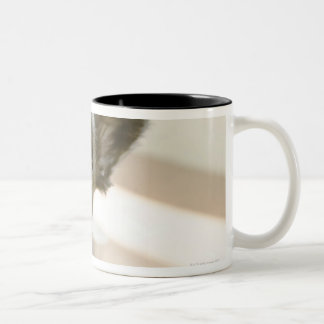 Peki-French Two-Tone Coffee Mug