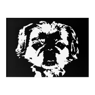 Pekingese Black & White Acrylic Wall Art