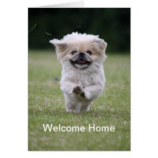 Pekingese dog running cute welcome home card
