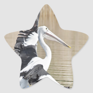 Pele Australian Pelican fly to freedom and peace Sticker