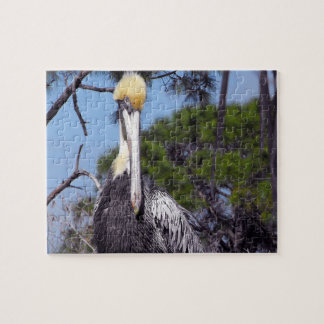 Pelican Perched Jigsaw Puzzle