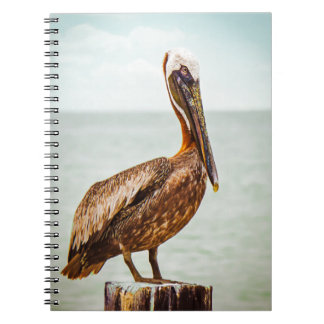 Pelican products notebook