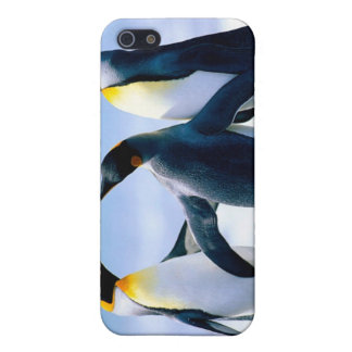 penguin ipod touch case iPhone 5 covers
