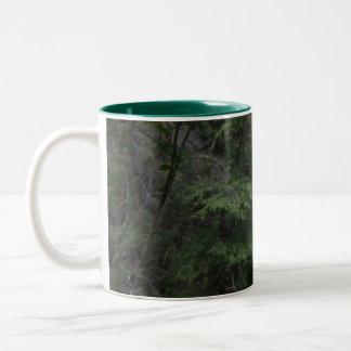 Pennsylvania Waterfalls Mug